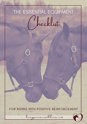 The Essential Equipment Checklist